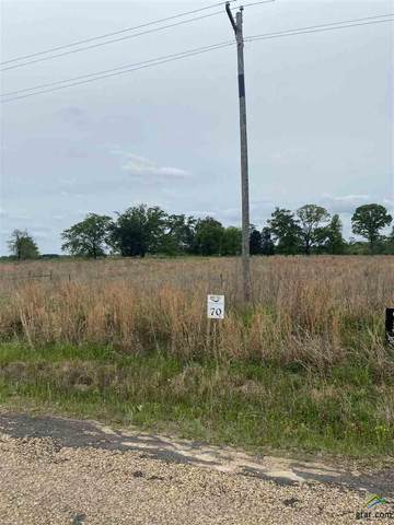 Lot 70 Pr 52320, Pittsburg, TX 75686 (MLS #10120619) :: Griffin Real Estate Group