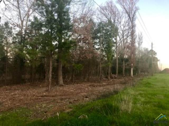 19951 State Hwy 110 S, Whitehouse, TX 75791 (MLS #10120625) :: The Wampler Wolf Team