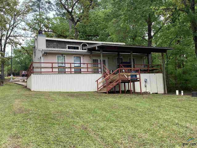 193 Cr 2405, Pittsburg, TX 75686 (MLS #10120634) :: The Wampler Wolf Team