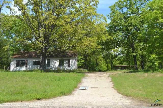 0 Fm 515, Alba, TX 75410 (MLS #10120697) :: Griffin Real Estate Group