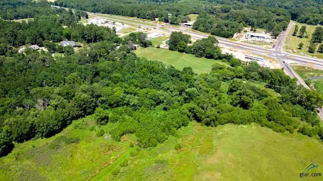 12.6 acres Fm 346, Flint, TX 75762 (MLS #10120710) :: RE/MAX Professionals - The Burks Team