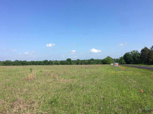 16949 C R 3224, Winona, TX 75792 (MLS #10120788) :: Griffin Real Estate Group