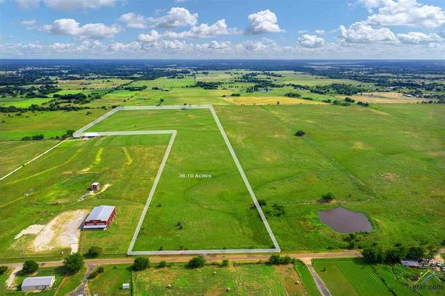 TBD Vz County Road 2807, Mabank, TX 75147 (MLS #10120812) :: The Wampler Wolf Team