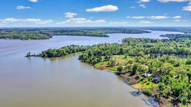 Lot 24 Waters Edge Lane, Mt Vernon, TX 75457 (MLS #10121087) :: Griffin Real Estate Group