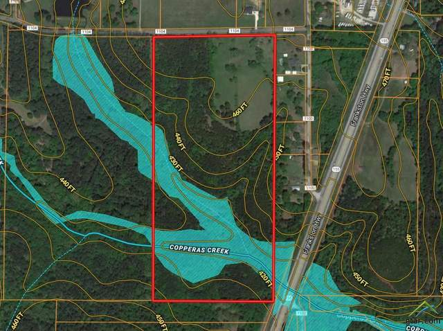 14777 C R 1104, Flint, TX 75762 (MLS #10121333) :: Griffin Real Estate Group