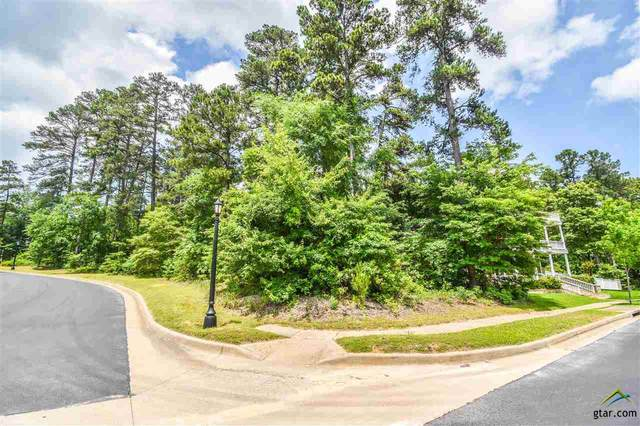 4018 Spartanburg Lane, Tyler, TX 75701 (MLS #10121415) :: The Wampler Wolf Team