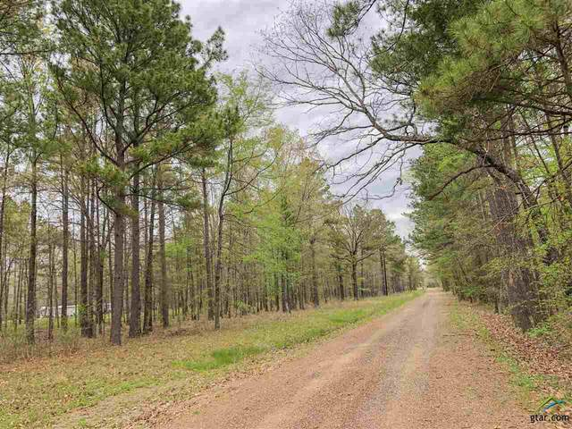 0 Cr 4223, Simms, TX 75574 (MLS #10121643) :: RE/MAX Professionals - The Burks Team