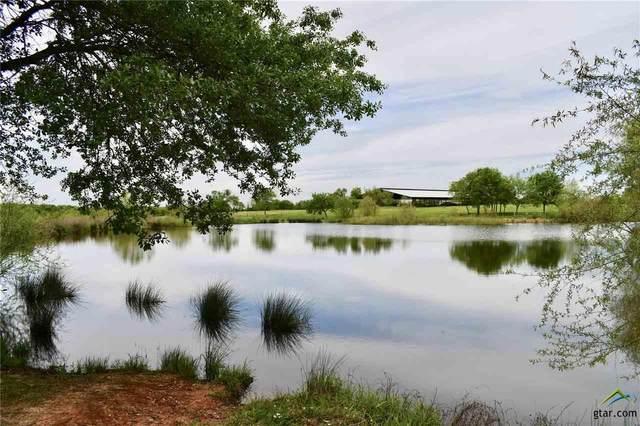 4044 County Road 2436, Como, TX 75431 (MLS #10121873) :: RE/MAX Professionals - The Burks Team