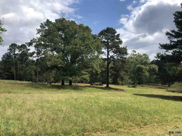 18304 Timber Oaks Dr (Lot 11), Lindale, TX 75771 (MLS #10121937) :: RE/MAX Professionals - The Burks Team