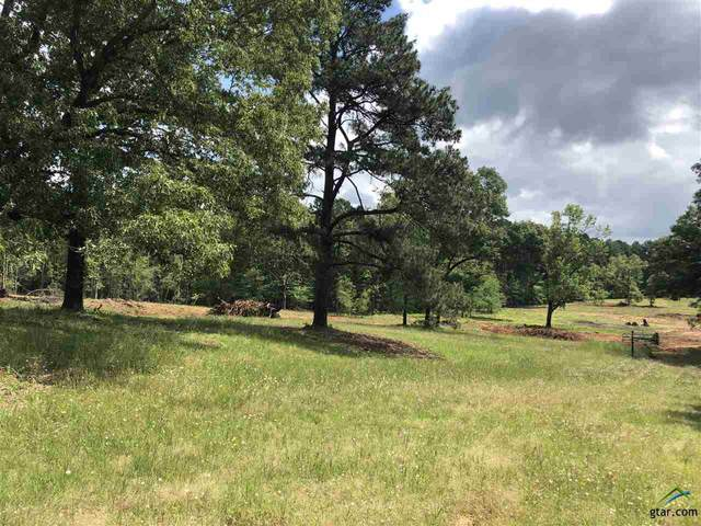18305 Timber Oaks Dr (Lot 12), Lindale, TX 75771 (MLS #10121939) :: RE/MAX Professionals - The Burks Team