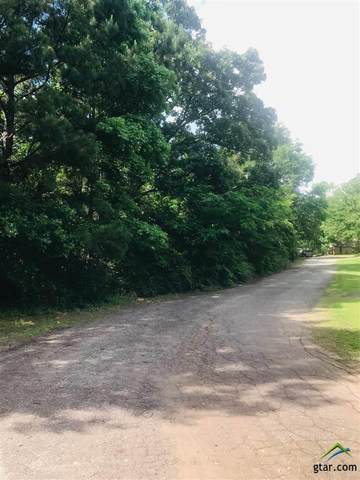 Lots 1-3 Mustang St., Quitman, TX 75783 (MLS #10121967) :: Griffin Real Estate Group