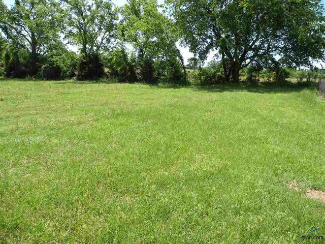 LOT 208 Arapaho, Quitman, TX 75783 (MLS #10122146) :: Griffin Real Estate Group
