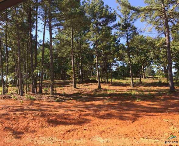12248 Oak Grove, Lindale, TX 75706 (MLS #10122359) :: Griffin Real Estate Group