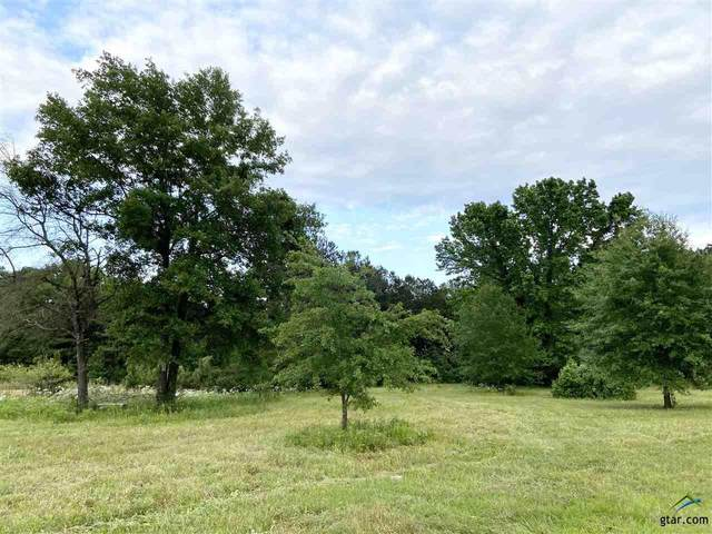 13681 County Road 4113, Lindale, TX 75771 (MLS #10122432) :: RE/MAX Professionals - The Burks Team