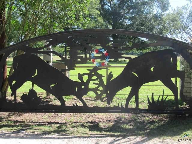 2379 Fm 1817, Elkhart, TX 75839 (MLS #10122636) :: The Wampler Wolf Team
