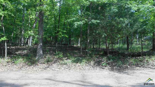 TBD Pr 8692, Winnsboro, TX 75494 (MLS #10122656) :: The Wampler Wolf Team