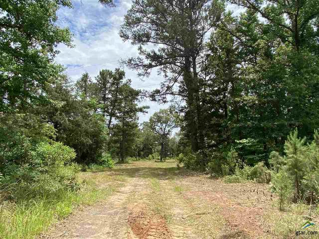 13721 County Road 4113, Lindale, TX 75771 (MLS #10122660) :: The Wampler Wolf Team