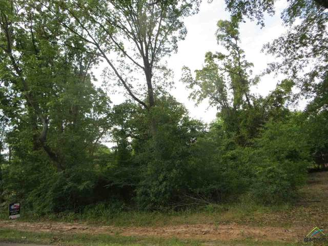 Lot 6 & 7 Cr 2297, Mineola, TX 75773 (MLS #10122675) :: The Wampler Wolf Team