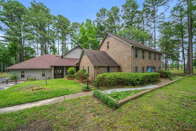 17164 County Road 136, Tyler, TX 75703 (MLS #10122760) :: Griffin Real Estate Group