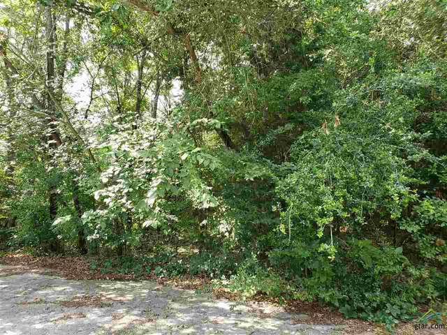 LOT 36 Brittian Court, Lindale, TX 75771 (MLS #10122761) :: The Wampler Wolf Team