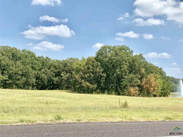 Lot 5C 6C 7C N Hwy 271, Pittsburg, TX 75686 (MLS #10122785) :: The Edwards Team Realtors