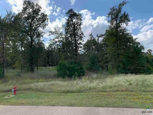 Lot 3 Stone Ridge Trail, Longview, TX 75605 (MLS #10122804) :: RE/MAX Professionals - The Burks Team