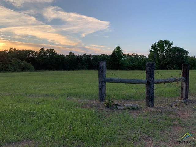 Lot 1 Cr 420, Tyler, TX 75704 (MLS #10122825) :: Griffin Real Estate Group