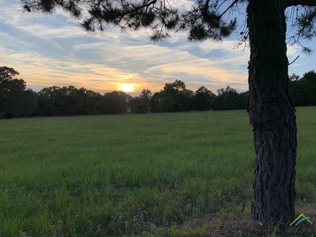 Lot 5 Cr 420, Tyler, TX 75704 (MLS #10122828) :: Griffin Real Estate Group
