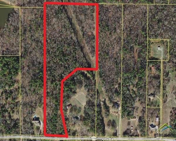 TBD Cr 2188 (Lilly Rd.), Whitehouse, TX 75791 (MLS #10122847) :: The Wampler Wolf Team
