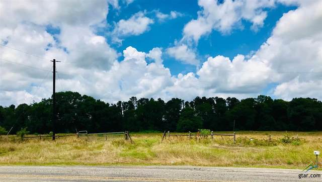00 Fm 13 East, Troup, TX 75789 (MLS #10122886) :: The Wampler Wolf Team
