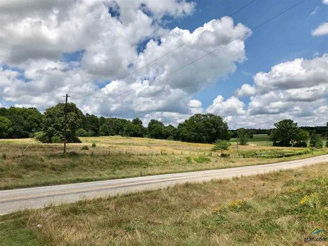 00 Fm 13 East, Troup, TX 75789 (MLS #10122887) :: The Wampler Wolf Team