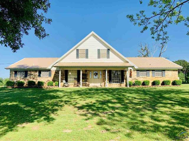 576 County Road 4201, Naples, TX 75568 (MLS #10122896) :: The Wampler Wolf Team