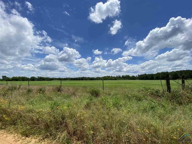 TBD Cr 1816, Jacksonville, TX 75766 (MLS #10122969) :: Griffin Real Estate Group
