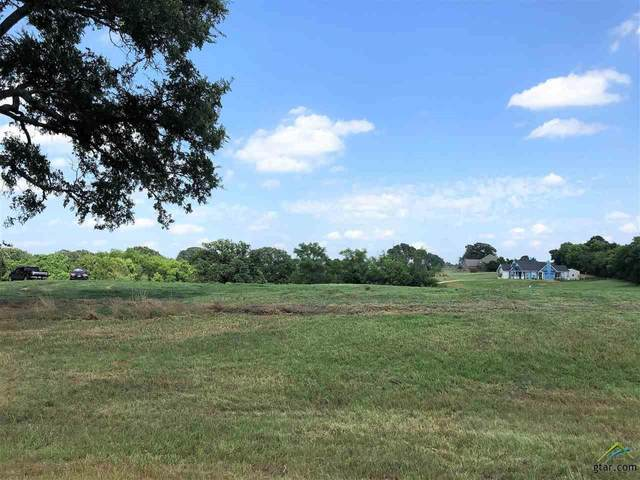102 Pine View Ct., Athens, TX 75752 (MLS #10123105) :: Griffin Real Estate Group