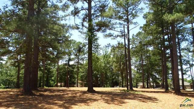 120 Cr 3524, Bullard, TX 75757 (MLS #10123160) :: Griffin Real Estate Group