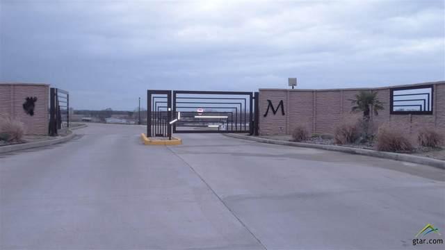 509 Bush Buck Way, Bullard, TX 75757 (MLS #10123372) :: RE/MAX Professionals - The Burks Team