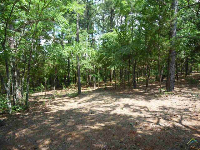 TBD County Road 468, Tyler, TX 75704 (MLS #10123380) :: The Wampler Wolf Team