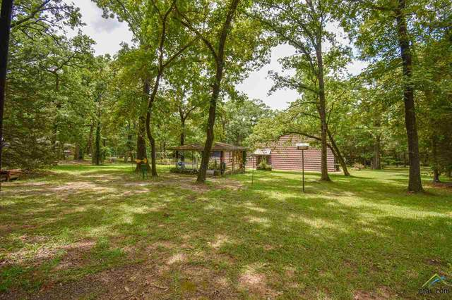 5150 Cr 413, Tyler, TX 75704 (MLS #10123623) :: The Wampler Wolf Team