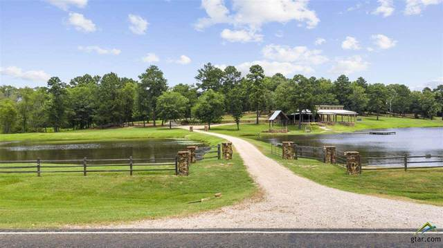 15757 Fm 317 N, Brownsboro, TX 75756 (MLS #10123733) :: The Wampler Wolf Team