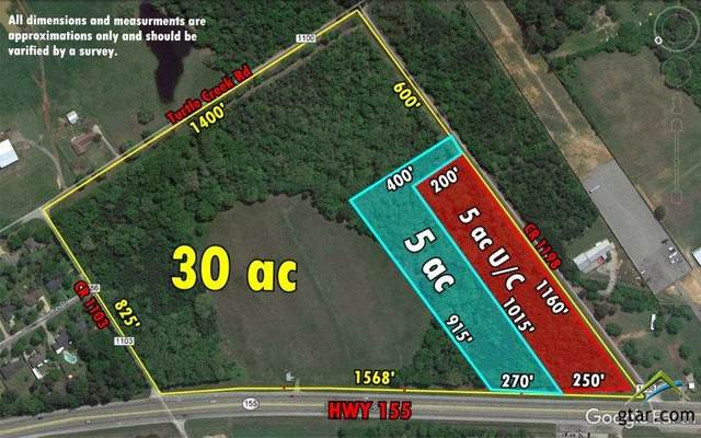 18775 S Hwy 155 Lot B, Flint, TX 75762 (MLS #10123764) :: The Wampler Wolf Team