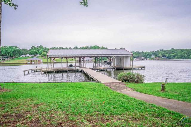 13533 Peninsula Rd, Whitehouse, TX 75791 (MLS #10123825) :: The Wampler Wolf Team