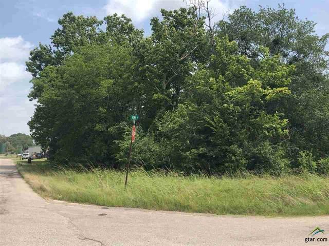 112 W Iowa, Van, TX 75790 (MLS #10123842) :: Griffin Real Estate Group