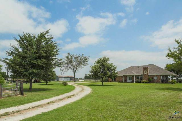 491 Vz County Road 3432, Wills Point, TX 75169 (MLS #10123894) :: The Wampler Wolf Team