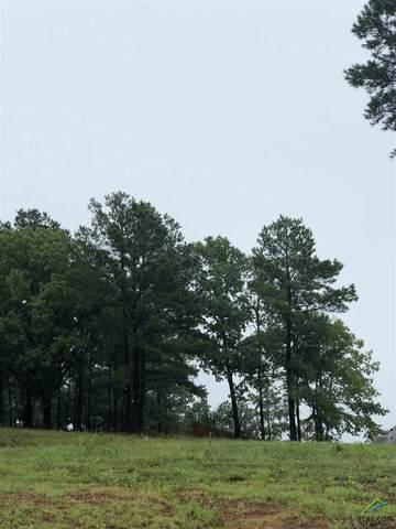 13513 Juniper Lane, Tyler, TX 75706 (MLS #10124049) :: Griffin Real Estate Group