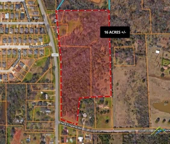 19725 Fm 2493, Flint, TX 75762 (MLS #10124072) :: Griffin Real Estate Group