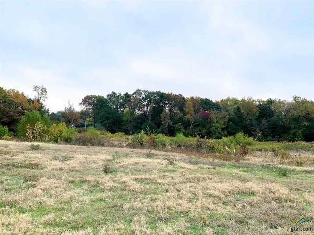 TBD S. Main St, Lindale, TX 75771 (MLS #10124119) :: The Wampler Wolf Team