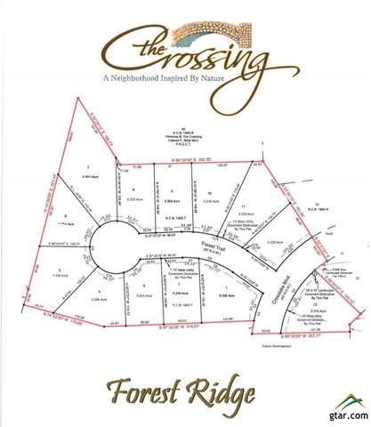 Lot 11 Forest Ridge, Tyler, TX 75703 (MLS #10124312) :: Griffin Real Estate Group