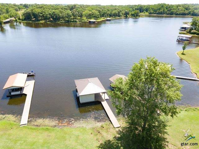 16 Lake Front Shores Road, Athens, TX 75751 (MLS #10124370) :: The Wampler Wolf Team