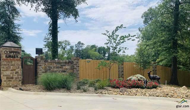 706 Copper Creek Cv, Tyler, TX 75703 (MLS #10124489) :: The Wampler Wolf Team