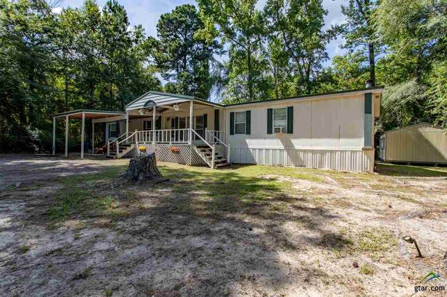 807 W County Line Rd, Troup, TX 75789 (MLS #10124556) :: Griffin Real Estate Group